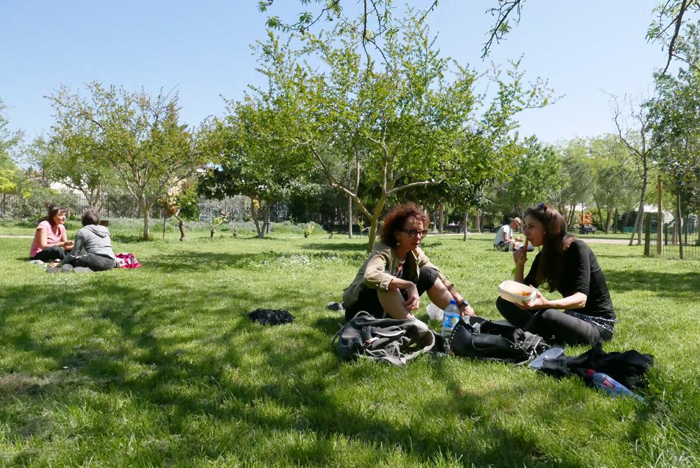 Déjeûner sur l'herbe .